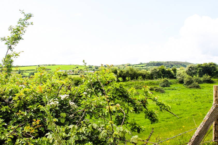 Irlanti-matkablogi-ottoizakaya-20